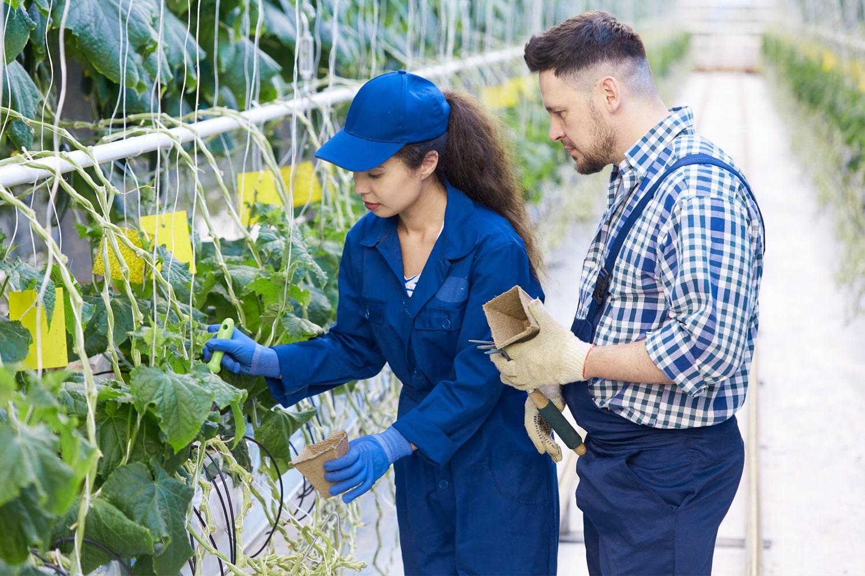 Farmer woman with evaluator