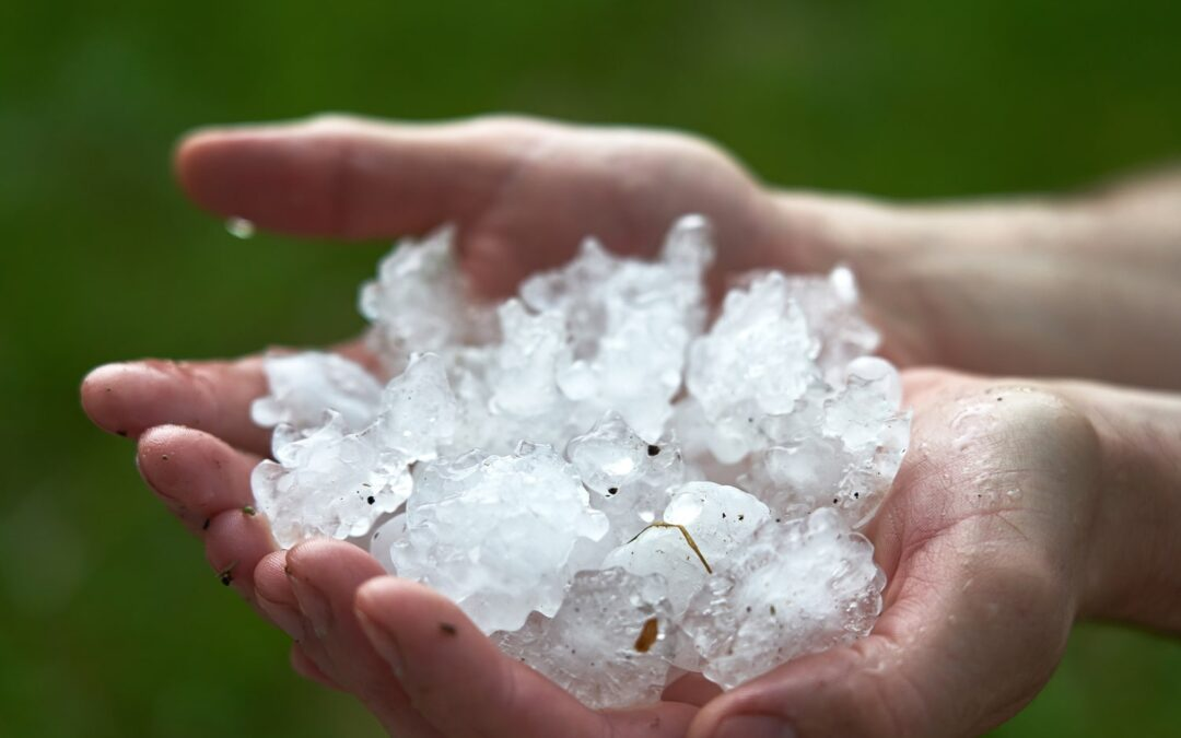 How Does Hail Insurance Work?